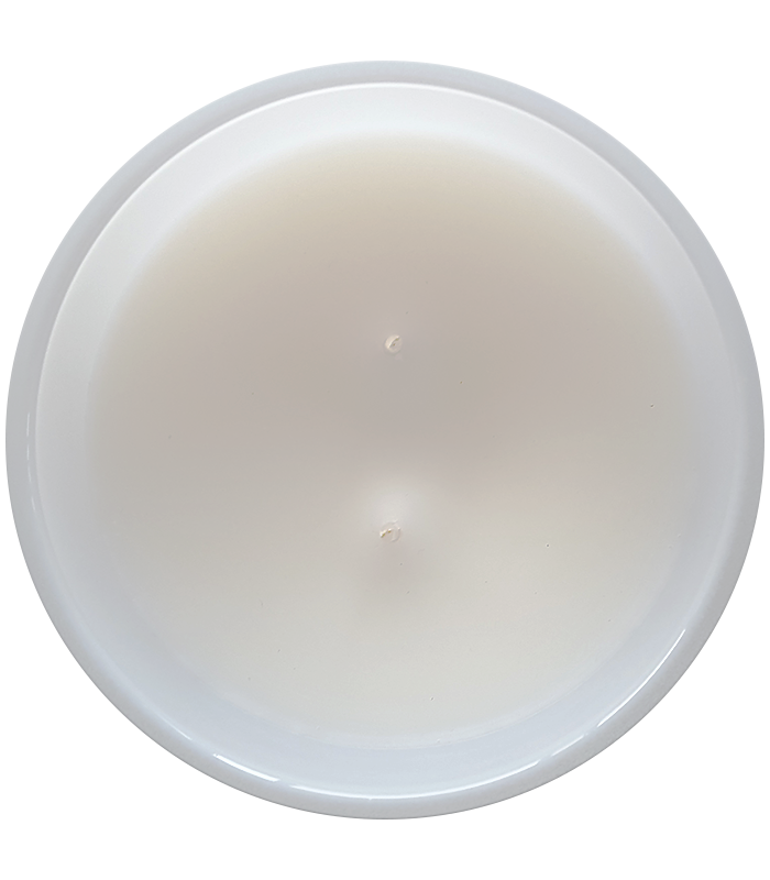 LARGE DOUBLE WICK CANDLE